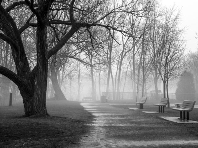 Brouillard à Sainte-Rose, Laval